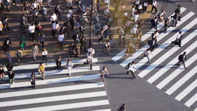 crowd people crossing zebra crossing at shibuya, tokyo, japan. - japan stock videos & royalty-free footage