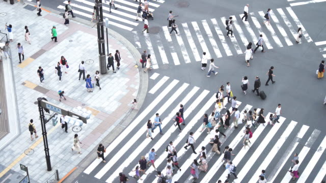 crowd people crossing zebra crossing , tokyo, japan. - pedestrian crossing stock videos & royalty-free footage