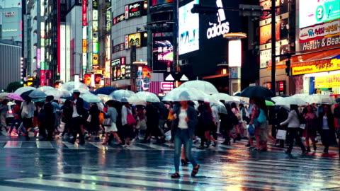 crowd people holding umbrella crossing road at shibuya while raining, twilight dusk - shibuya crossing stock videos & royalty-free footage