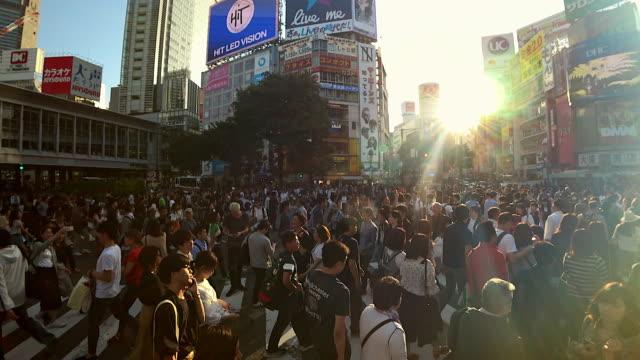 menge leute zu fuß auf shibuya kreuzung straße mit sonnenlicht in tokyo, japan - besichtigung stock-videos und b-roll-filmmaterial