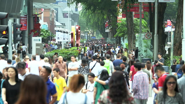 crowd people walking on the road.(timelapse) - citizenship stock videos & royalty-free footage