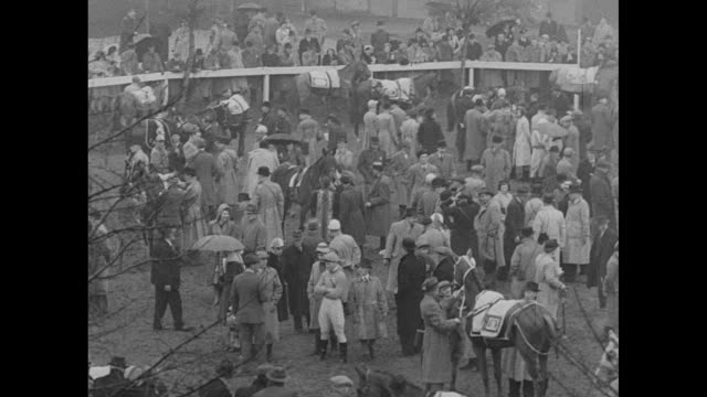 crowd shot at the grand national steeplechase race / crowd mills about / previous year's winner prince regent / blanketed horses are led / crowd... - steeplechase stock videos and b-roll footage