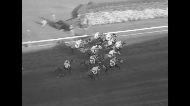 crowd shuffles about at hialeah park race track / high angle of horses out of the starting gate to begin flamingo stakes race / man in crowd watches... - hialeah stock videos & royalty-free footage