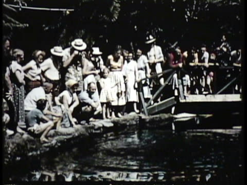 1955 MONTAGE WS MS CU TD Crowd standing around pond, watching fish jumping up to feed, underwater view of swimming fish / New Zealand / AUDIO