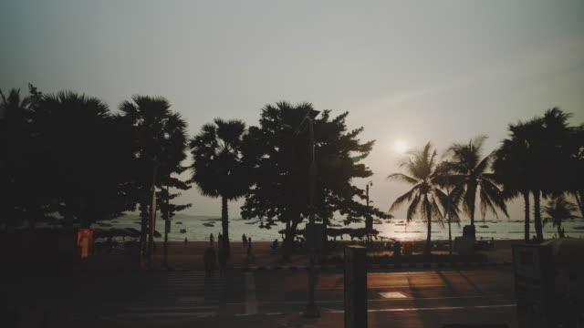 crowd, tourists with palm tree beach. - fan palm tree stock videos & royalty-free footage