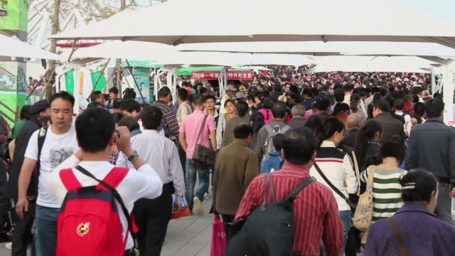 ls crowd walking in 2011 international horticultural exposition/xian,shaanxi,china - orticoltura video stock e b–roll
