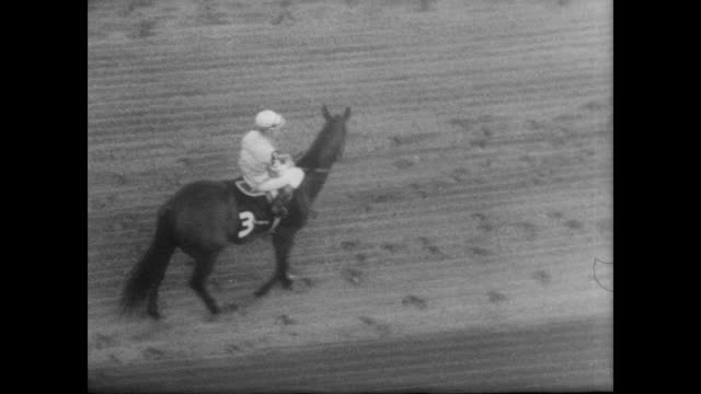 vídeos de stock, filmes e b-roll de crowd watch as horses move to starting positions / damascus / proud clarion / in reality / damascus leads in the final stretch / damascus pulls to... - baltimore maryland