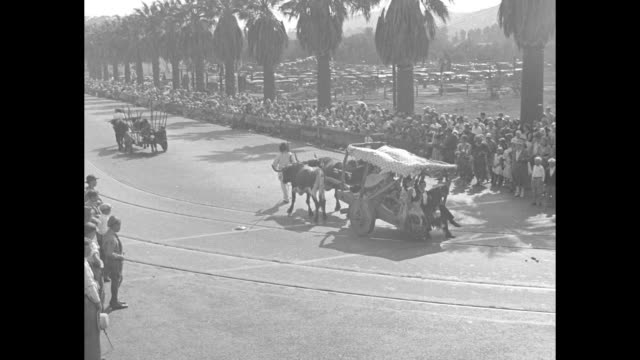 crowd watching parade / people riding in old cart pulled by two oxen down street crowd watching / title card rhythmic romance / four shots of couple... - 牛車点の映像素材/bロール