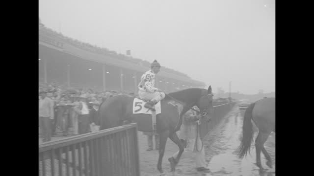 crowd with a few umbrellas tent at belmont park / crowd / finish line with muddy track / #5 nashua being led onto track with jockey eddie arcaro... - hurdling horse racing stock videos and b-roll footage
