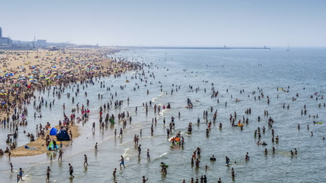crowded beach - the hague stock videos and b-roll footage