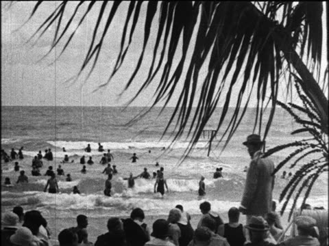 b/w 1924 crowded beach with man walking by in foreground / miami beach, florida / industrial - palmenblätter stock-videos und b-roll-filmmaterial