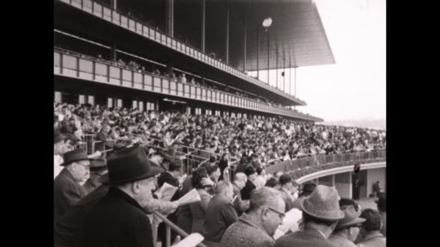 Crowded grandstand horses break out of the starting gate race around track horse 7 wins CU 3 boys disappointed