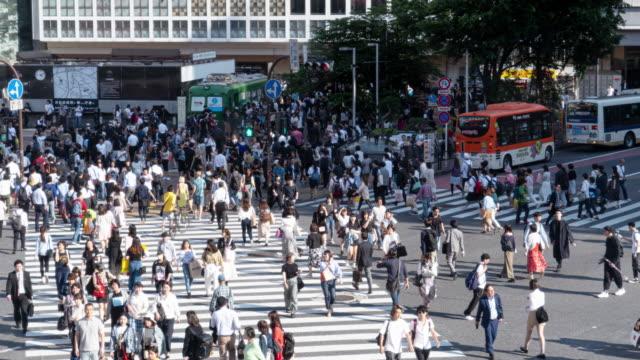 pedoni affollati all'attraversamento di shibuya a tokyo, giappone. - pedestrian video stock e b–roll