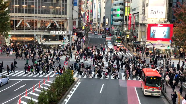 crowded people at shibuya in tokyo - pedestrian stock videos and b-roll footage