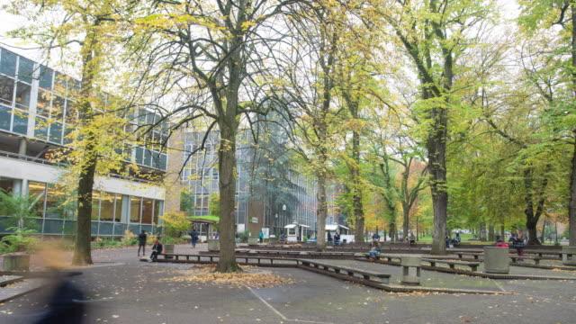 Beengt Personen im Wald in Portland Universy. timelapse 4 k hyperlapse