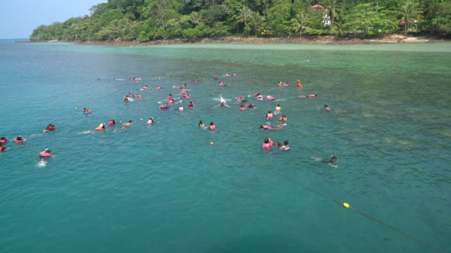 crowded people snorkelling or diving