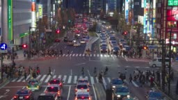 Crowded street of the district of Shinjuku