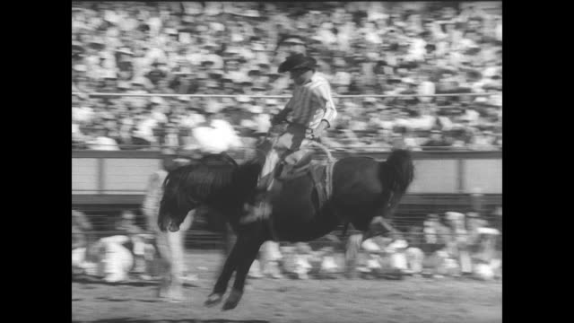 Crowds arrive at the Huntsville prison complex for the 35th annual prison rodeo in Texas / horses come into the arena / rodeo clown adjusting saddle...