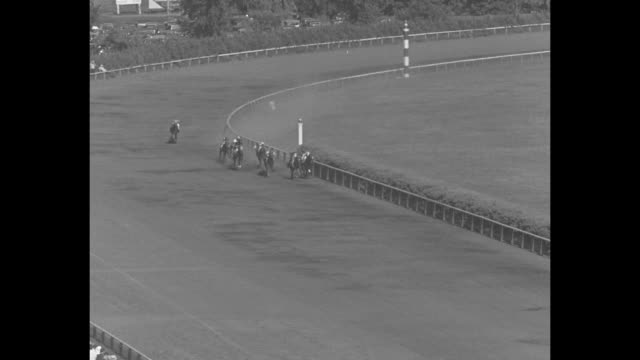 crowds at arlington park race track in arlington heights, il / crowds line route as horses parade to camera prior to start of arlington futurity... - スポーツの判定員点の映像素材/bロール