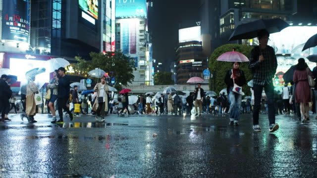 crowds at shibuya crossing on rainy night - tokyo japan stock videos & royalty-free footage