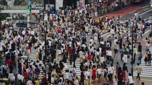 crowds at the famous shibuya crossing on a sunday afternoon, slow motion - population explosion stock videos & royalty-free footage