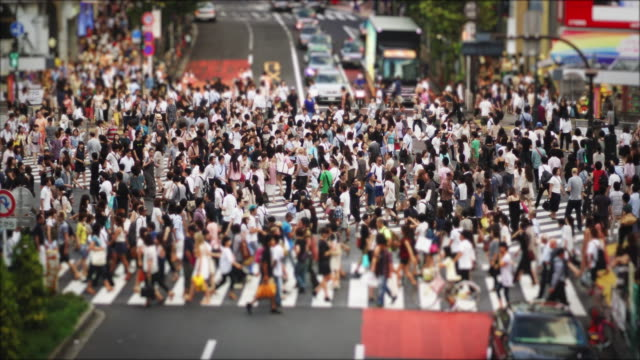 crowds at the famous shibuya crossing on a sunday afternoon, tilt shift, slow motion - 人口爆発点の映像素材/bロール