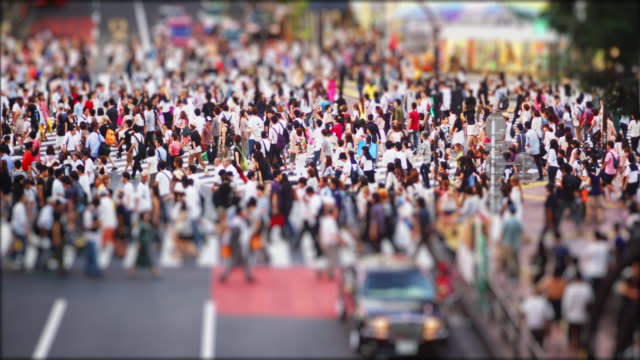 crowds at the famous shibuya crossing on a sunday afternoon, tilt shift, time lapse - 人口爆発点の映像素材/bロール