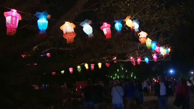 crowds attending the chinese lantern festival in auckland domain for lunar new year celebrations - chinesisches laternenfest stock-videos und b-roll-filmmaterial