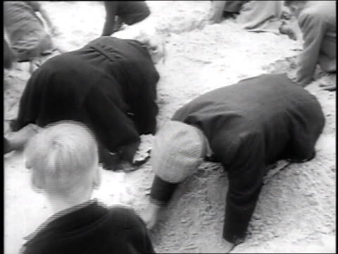 1951 montage crowds digging through sand looking for buried chest containing 1500 guilders / egmond beach, holland - arte dell'antichità video stock e b–roll