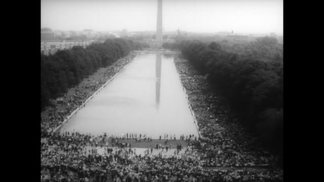 crowds gathering outside lincoln memorial / ha view of washington mall and washington monument / demonstrator high up in tree waving placard - lincolndenkmal stock-videos und b-roll-filmmaterial