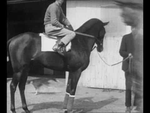 crowds in stands at horse race / racehorse war admiral stands with jockey charles kurtsinger on his back and trainer george conway standing by war... - hound stock videos & royalty-free footage