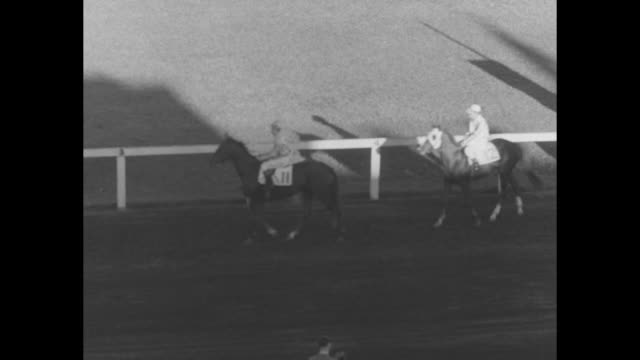 vs crowds in stands at long branch racetrack in toronto for the orpen cup and saucer handicap / fred orpen racetrack owner chats with ontario lt gov... - starting gate stock videos and b-roll footage