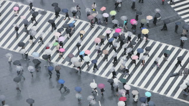 vidéos et rushes de ws aerial crowds of people crossing famous crosswalks at centre of shibuyas fashionable shopping and entertainment district / tokyo, japan - piétons