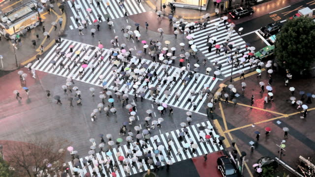 ws aerial crowds of people crossing famous crosswalks atcentre of shibuyas fashionable shopping and entertainment district / tokyo, japan - zebra crossing stock videos and b-roll footage