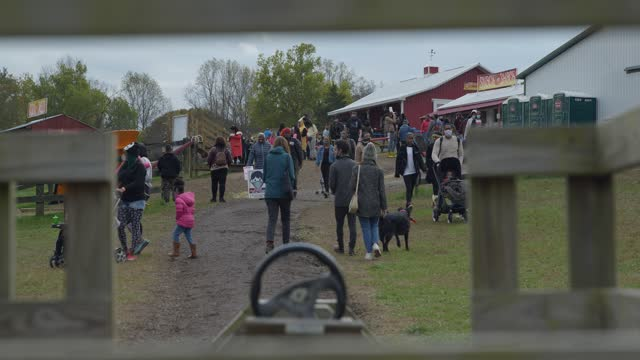 crowds of people wearing masks at autumn festival at montplier farm during pandemic - focus on background stock videos & royalty-free footage