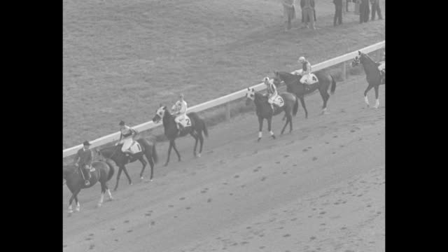 crowds on grounds of laurel park racetrack / war admiral walks covered with a blanket and accompanied by trainer / ws war admiral walks wearing as... - starting gate stock videos and b-roll footage