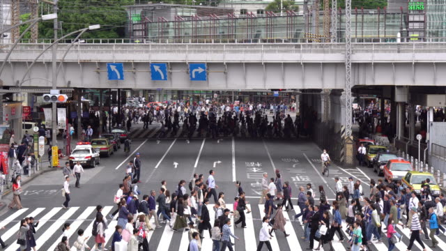 crowds people walking on a crosswalk - japanese culture stock videos & royalty-free footage