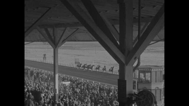 Crowds stand alongside racetrack and in grandstands at Tijuana Jockey club with palm tree in foreground / GV crowds / view from under grandstand of...
