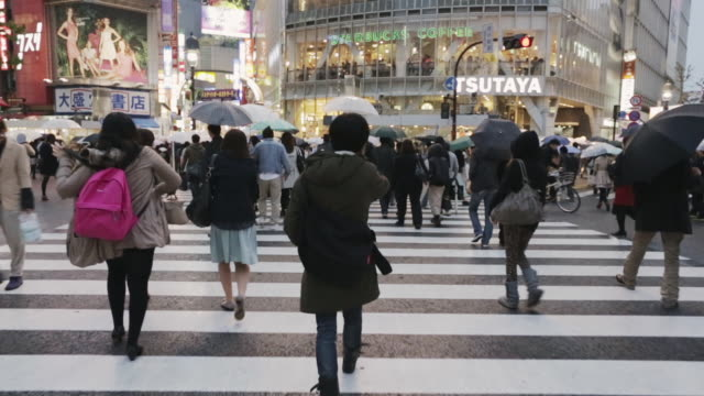 ms, ts crowds walk across a crossroads or scramblewalk in tokyo's shibuya district / tokyo, japan - tokyo japan stock videos and b-roll footage