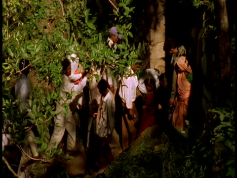 ms crowds walking through trees, bandhavgarh national park, india - national icon stock videos & royalty-free footage