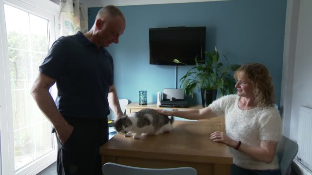 'croydon cat killer' believed to have struck again; england: hampshire: portchester: int debbie nicholson and steve nicholson petting cleo cleo on... - ポーチェスター点の映像素材/bロール
