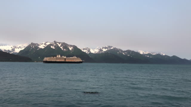 cruise ship leaving seward with snowcapped mountain in the background - tranquility stock videos & royalty-free footage