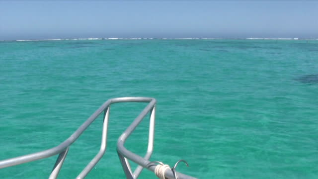 hd: cruising at ningaloo reef - ningaloo reef stock videos & royalty-free footage