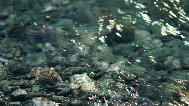 crystal clear glacial river flowing over schist stone riverbed with sunlight highlights reflection on the flowing water surface - schist stock videos and b-roll footage