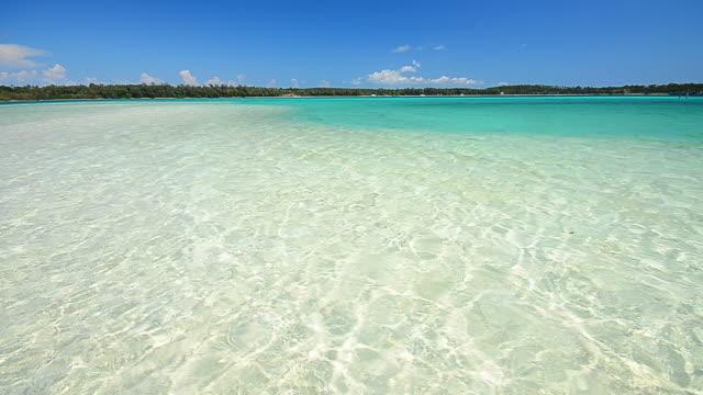 crystal clear water beach on paradise island - vik vatten bildbanksvideor och videomaterial från bakom kulisserna