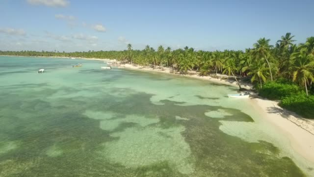 crystal clear water - dominican republic stock videos and b-roll footage
