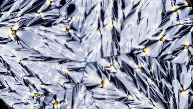 crystal of vitamin c under microscope - ascorbic acid stock videos & royalty-free footage