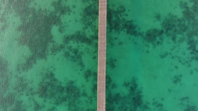vídeos de stock e filmes b-roll de crystal-clear turquoise ocean with long wooden jetty at sunrise, aerial top view - trilho
