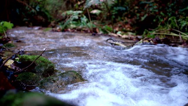 Crystalline Water