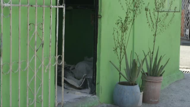 césar gálvez tuvo que rociar con cal el cuerpo de su padre para frenar su descomposición luego de que los servicios funerarios de guayaquil se se... - rociar stock videos & royalty-free footage